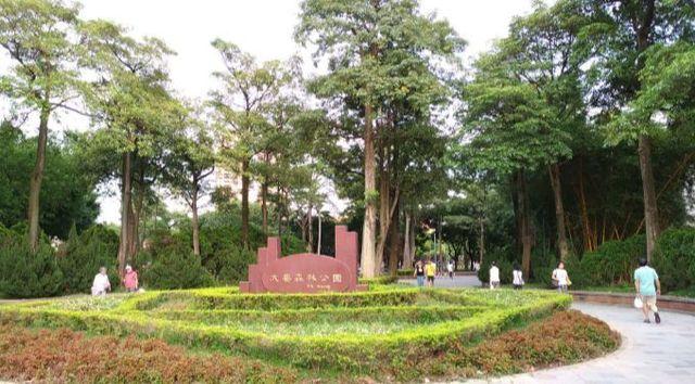台北大安森林公園1.jpg