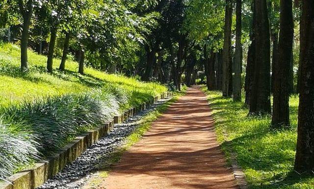 台北大安森林公園13.jpg