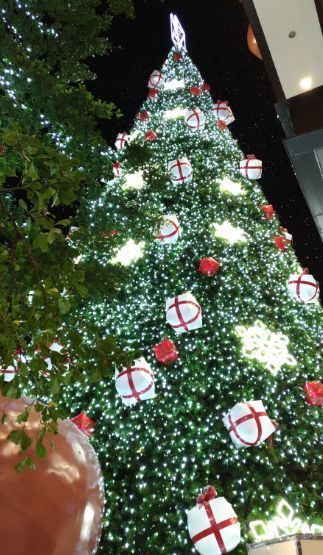 台湾クリスマス10.jpg
